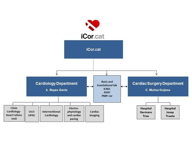 Research groups (Research) | iCor | Institut del Cor del germans Trias i Pujol